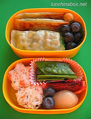 Rectangular mandoo bento lunch for preschooler