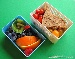 Sandwich and fruit lunch for preschooler