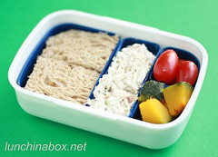 Holiday injury bento lunch for preschooler